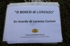Bosco_Lorenzo_2157