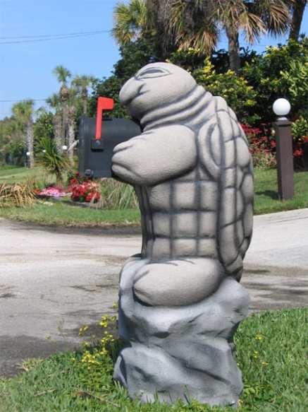 mailbox13 - Turtle