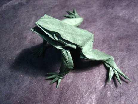 frog2 (1)