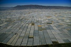 5. Greenhouses-in-San-Augustin-near-Almería-Andalusia-Spain