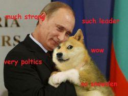 Doge-2