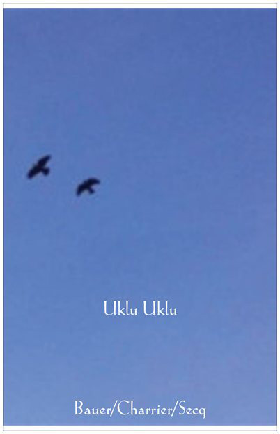 Martin Bauer - Charles Eric Charrier* - Cyril Seqc – Uklu Uklu Label: Somehow Recordings – SR-31 Format: CDr, Album Pays: France Date: 16 Feb 2012 Genre: Electronic Style: Abstract, Drone, Ambient