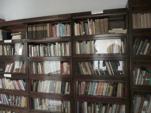 Bookcases in the library