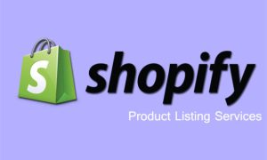 There are many e-commerce services companies which are providing Shopify product upload service in the best possible way.