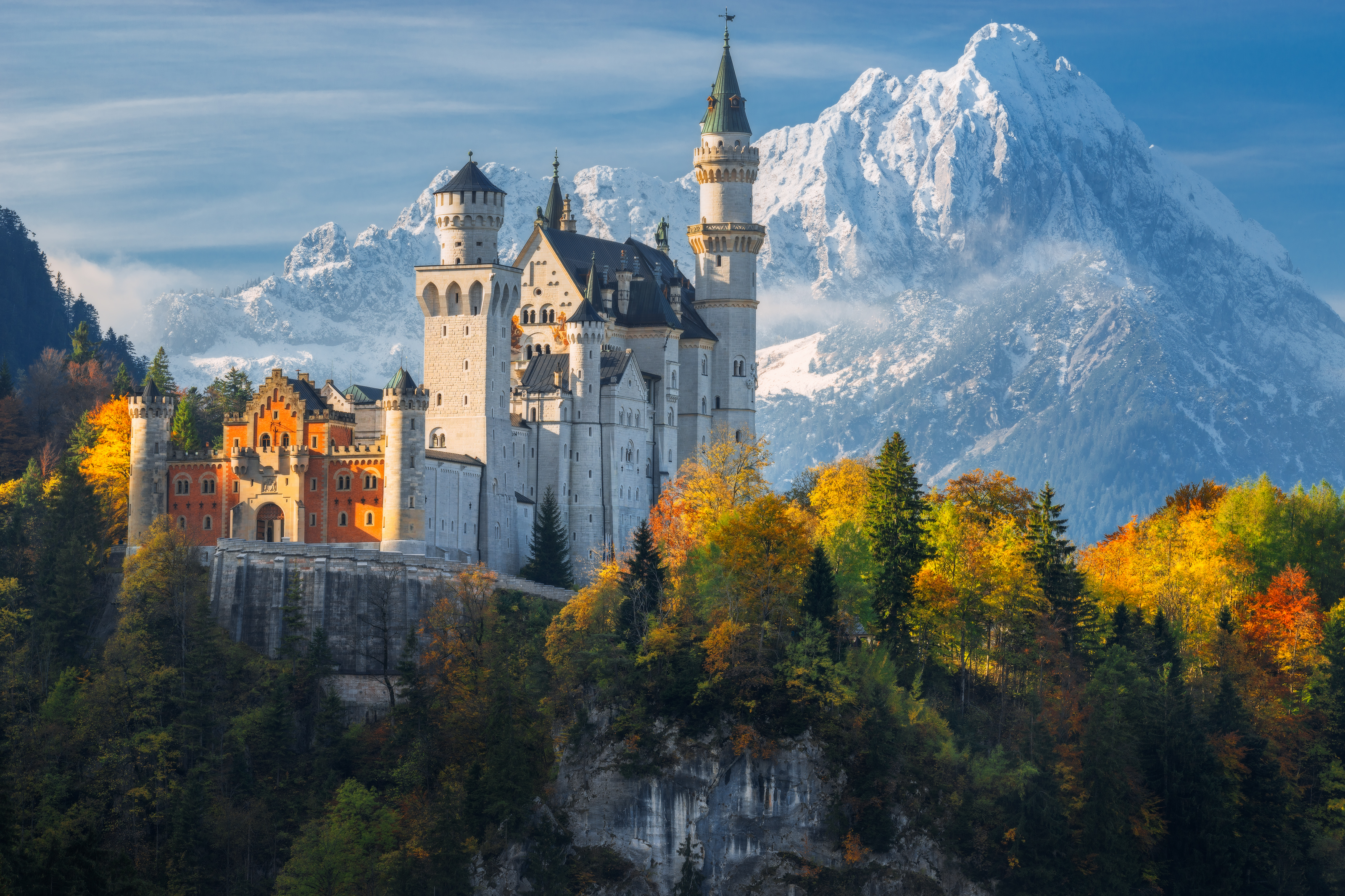 Black Forest Germany Tours