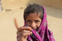Thar Desert dweller