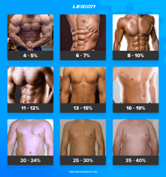 diagram of body fat obese wiring diagram expert percentage of body fat diagram diagram of fat body [ 1600 x 1639 Pixel ]