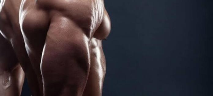 tricep workouts for mass