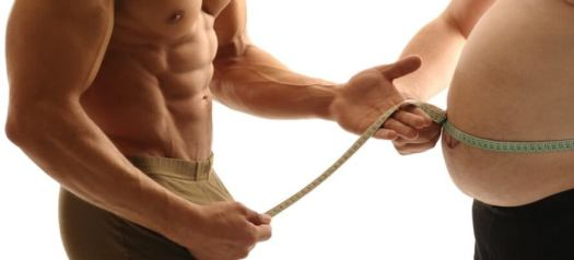 metabolic damage solution (1)