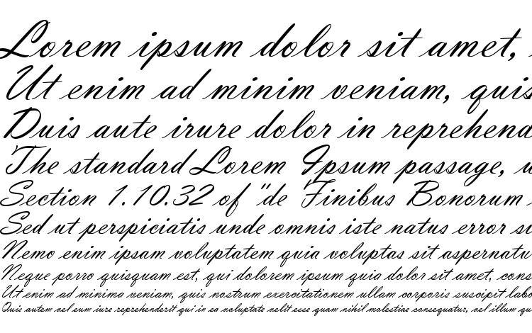 Vladimir Script Font Download Free / LegionFonts