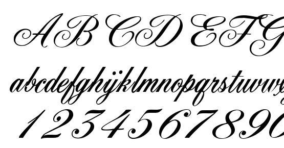 York Script ES Font Download Free / LegionFonts
