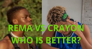 rema vs crayon six months under mavin records, who is better? full statistics