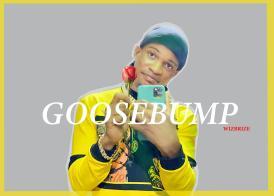 Wizbrize - Goosebumps