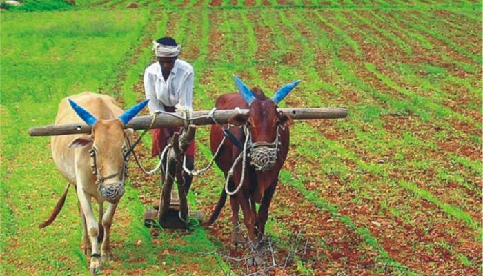 UP Govt to waive off over Rs 30,000 crore worth farmers' loans
