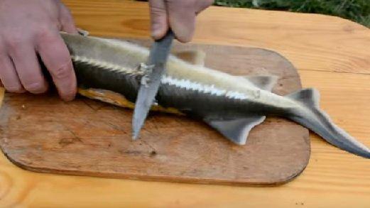 Tahta üzerinde bıçak üzerinde sterlidi'den pullu olarak kaldırıldı
