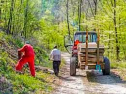 Оформление визы D для сезонного работника в Латвии