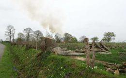 Un écocide inconscient ! - la lettre ouverte aux mayennais du Collectif Bocage