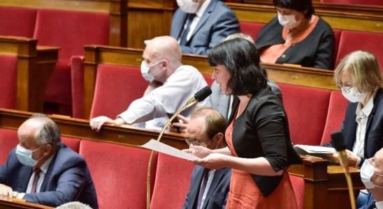 Géraldine Bannier dans l'Hémicycle