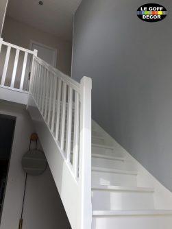 escalier satin et peinture lambris plomeur