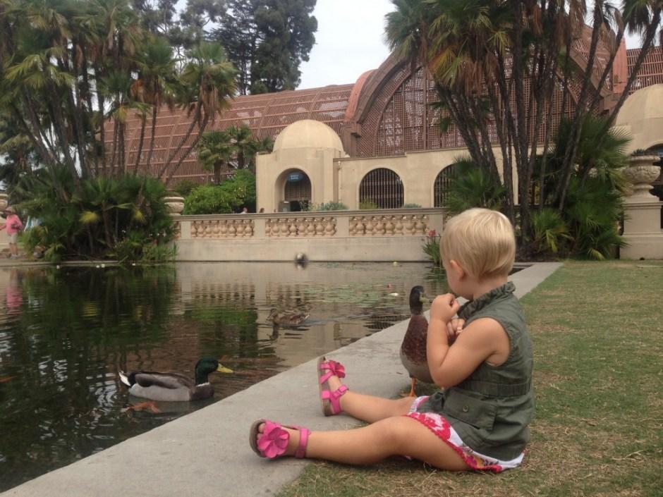feeding the ducks at balboa park