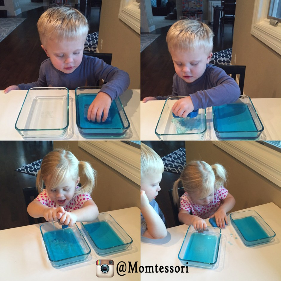 montessori sponge squeezing