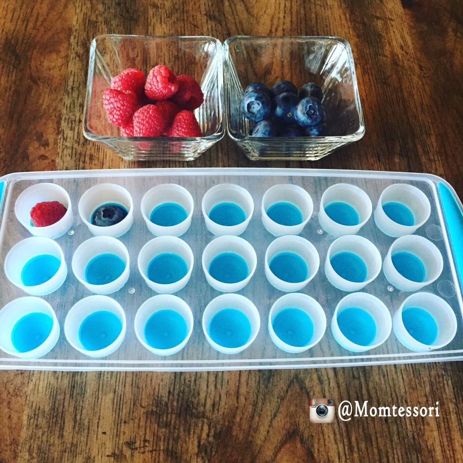 montessori fruit patterns