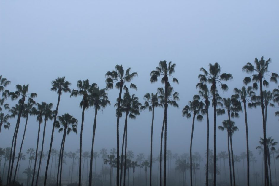 la-jolla-shores-morning-fog