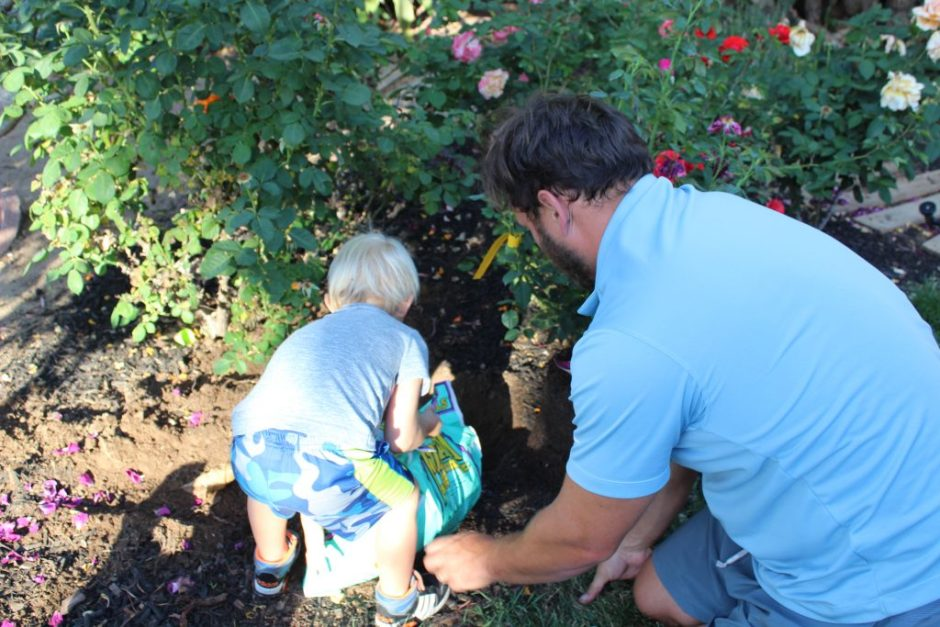 planting-mothers-day-rose-garden