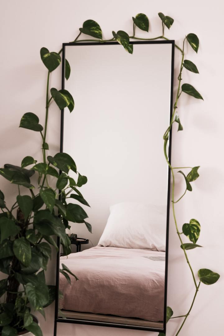 dormir avec des plantes