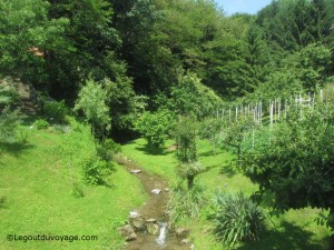 Ruisseau proche du monastère Olimje - Slovénie