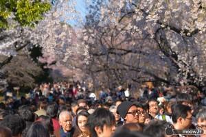 Comment réussir son voyage au Japon
