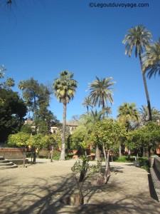 Jardin de Carlos V - Alcazar de Séville