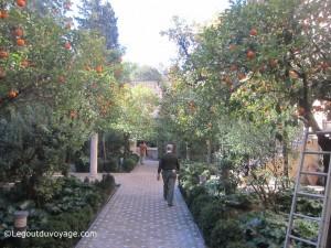 Jardin de la Galera - Les jardins de l'Alcazar