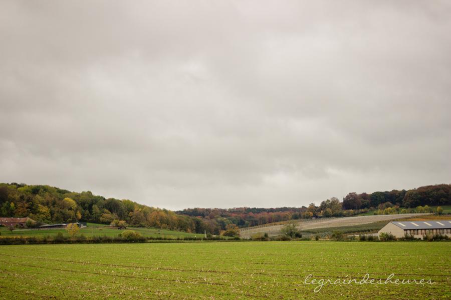 automne à Warsage