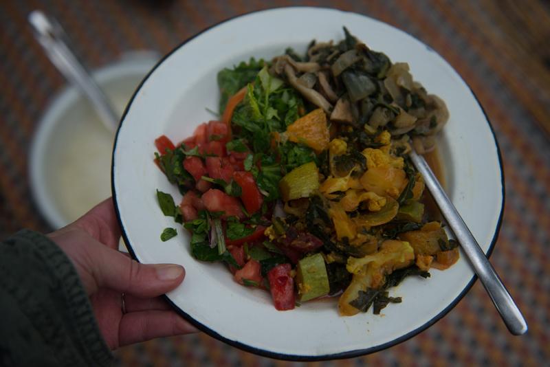 ליקוט צמחי מאכל