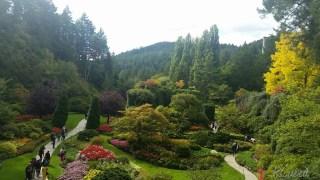 The Sunken Garden felt like walking into a scene from a Studio Ghibli movie.
