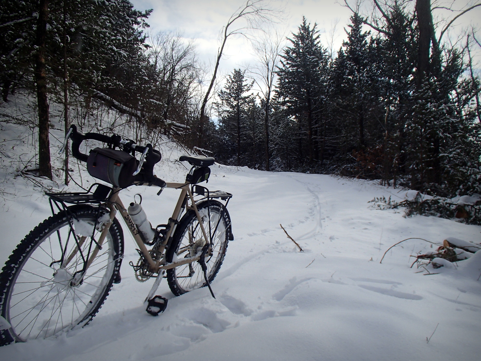 Playing in the Snow on the Lehigh Portland Trails