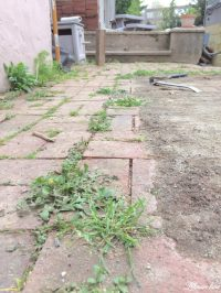 DIY Flagstone Patio - Lehman Lane