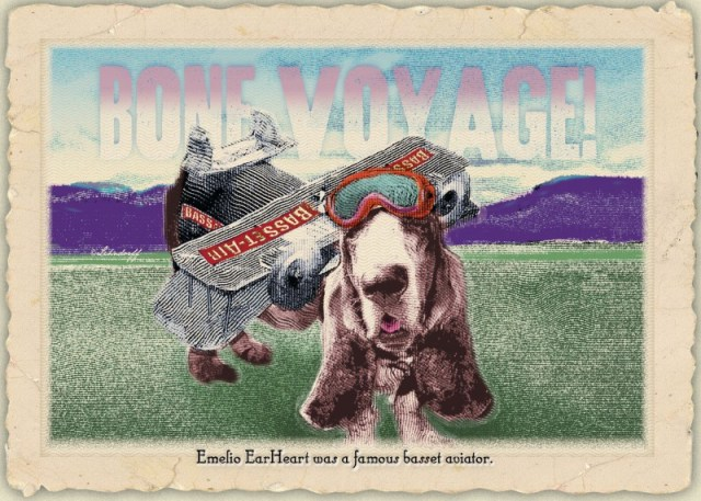 Basset travels