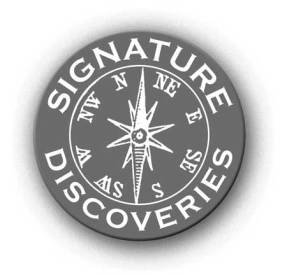 sigdiscov-logo