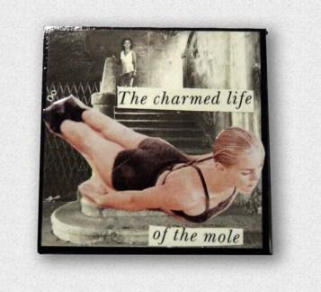 _charmed-mole-pin