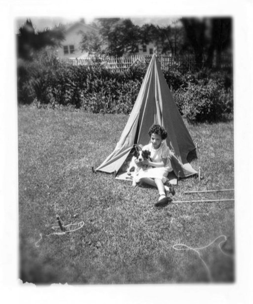 B-dog-tent