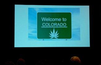 Marijuana and HD