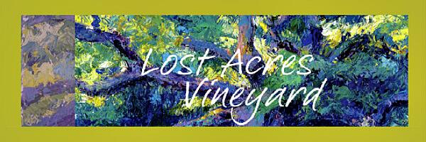 LA-Vineyard