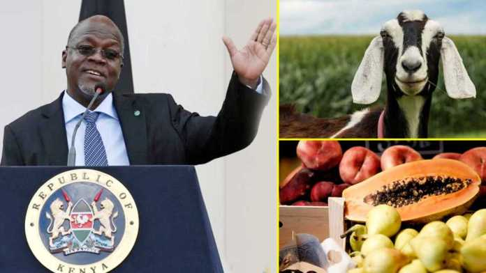Covid-19: Goat, fruit test +ve for coronavirus in Tanzania; President questions kits