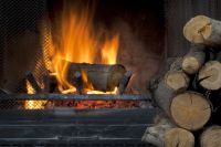 Best Wood to Burn in Your Colorado Fireplace