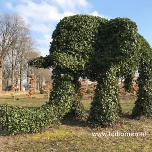 Boomkwekerij De Vossenberg