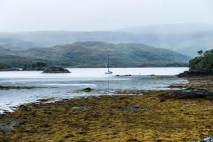 Leica-Hunting-Blog_Niall-Rowantree_rainy-Ardnamurchan-klein