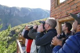 Photo-9---watching-the-condor-klein