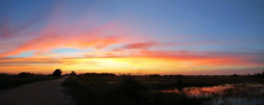 Sonnenuntergang-im-Sumpfgebiet-von-Beira